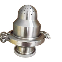 Sanitary Non Return Valve with Spray Ball
